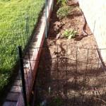 Hubby Plants a Garden