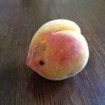 Homey-Grown peach